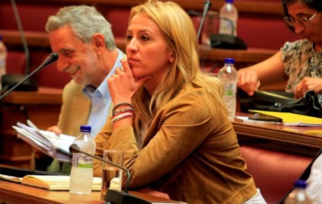 """Το ΠΑΣΟΚ αποκαλεί τη Δούρου """"χρυσαυγίτισσα"""" επειδή κάλεσε τον Βενιζέλο να προστατέψει την ομογένεια στην Ουκρανία!"""