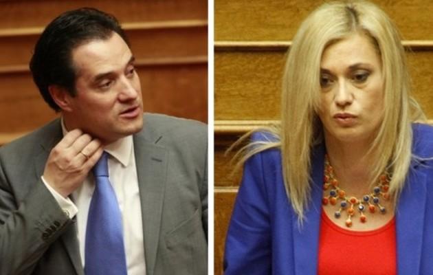 """Ερώτηση της Ρ. Μακρή στη Βουλή για """"ύποπτες"""" δημόσιες συμβάσεις του Α. Γεωργιάδη"""