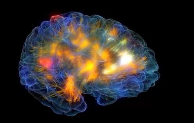 Δείτε τον ανθρώπινο εγκέφαλο σε τρισδιάστατη απεικόνιση