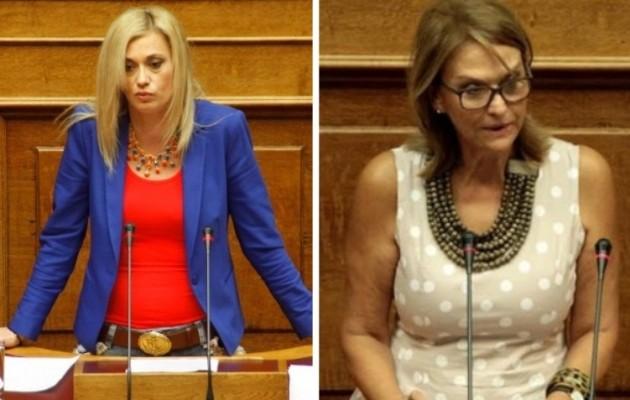Ερώτηση της Ρ. Μακρή στη Βουλή για το 1.000.000 ευρώ που φέρεται να πήρε η ΜΚΟ της Μ. Ρεπούση