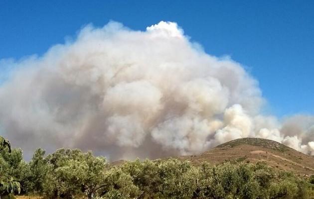 Κίσαμος: Μαίνεται η πυρκαγιά – Εκκενώθηκε χωριό