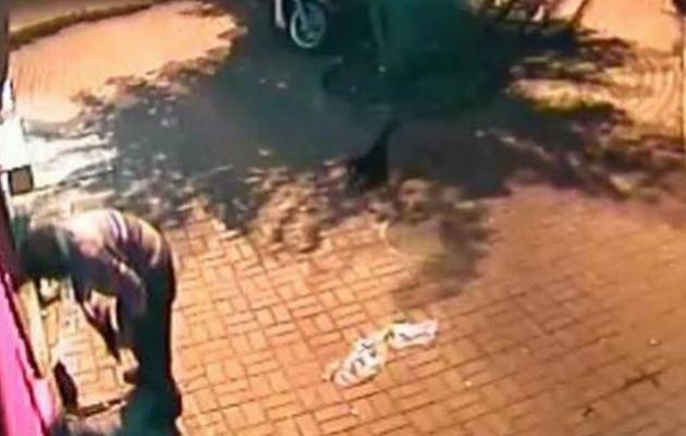 Σκότωσε χωρίς λόγο 2 μικρά γατάκια (βίντεο)