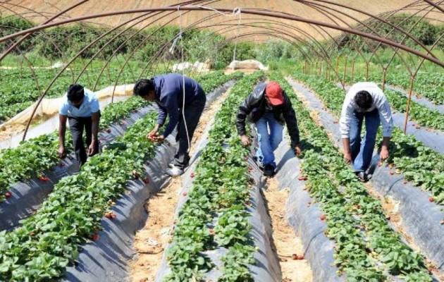 Μορφή επιδημίας έχει λάβει στην Ελλάδα η ανασφάλιστη εργασία