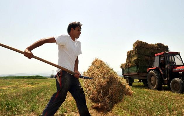 Γενναίο κούρεμα για χιλιάδες δανειολήπτες αγρότες – Ποιους αφορά η ρύθμιση