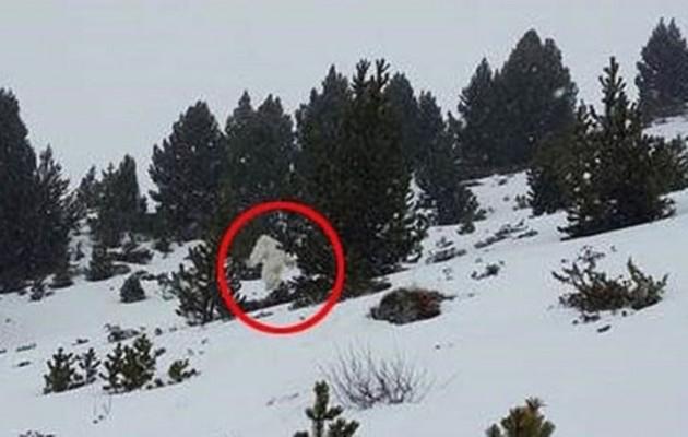 Είναι αυτό ένας Μεγαλοπόδαρος στην Ισπανία; (βίντεο + φωτο)