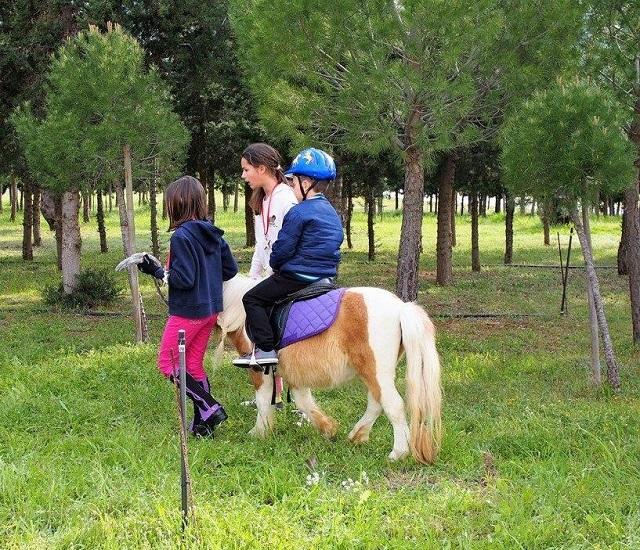 δραστηριότητες με πόνυ για τα παιδιά στους χώρους του ιπποδρόμου