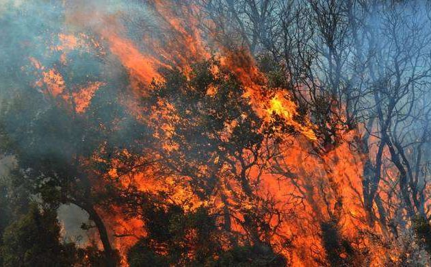 Τρεις Ρομά εμπρηστές που έβαλαν φωτιά στην Κέρκυρα την Τρίτη στον Εισαγγελέα