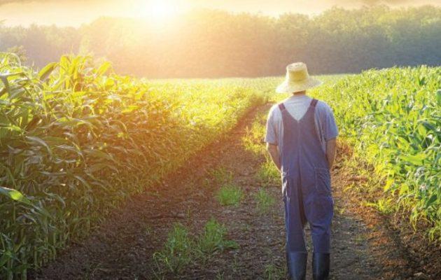 Αγροτική πολιτική – Οι άξονες μιας εναλλακτικής πορείας