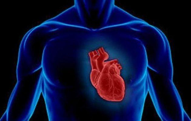 """Βρέθηκε η ουσία που """"γιατρεύει"""" την καρδιά – Σε ποιες τροφές βρίσκεται"""