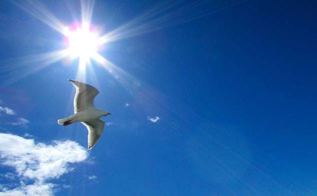 Καλός καιρός την Παρασκευή με ήλιο και 27 βαθμούς