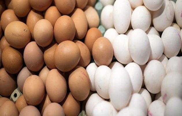 Ανάκληση κοτόπουλου και χιλιάδων βιολογικών αυγών