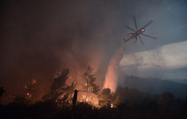 Συνεχής επικοινωνία Τόσκα-Τσίπρα για τις πυρκαγιές – Υπόνοιες για σχέδιο εμπρηστών