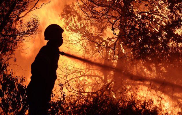 Νύχτα-κόλαση σε Κάλαμο και Ζάκυνθο – Μαίνονται ανεξέλεγκτες οι μεγάλες πυρκαγιές