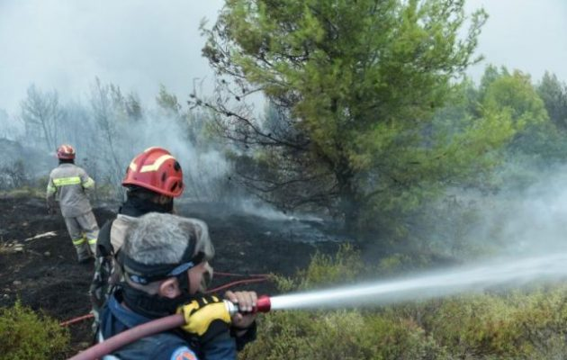 Φωτιά στον Βύρωνα κοντά στην Καισαριανή