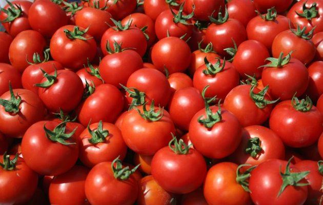 Τομάτες αγνώστου προελεύσεως στην αγορά του Ρέντη