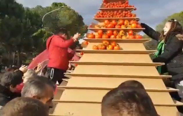 ΒΙΝΤΕΟ ΣΟΚ! Πεινασμένοι Αλβανοί λεηλατούν έκθεση με γεωργικά προϊόντα στα Τίρανα (βίντεο)