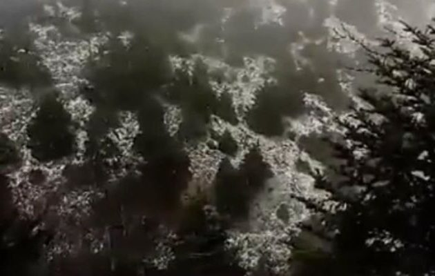 Έπεσαν τα πρώτα χιόνια του χειμώνα στην Πάρνηθα… (φωτο)
