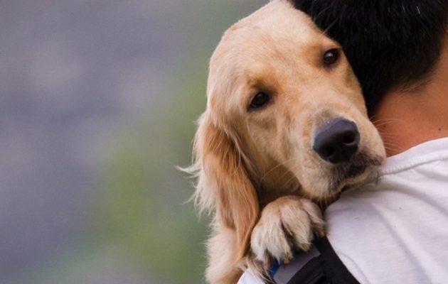 Σουηδοί επιστήμονες: Όσοι έχουν σκύλο δεν παθαίνουν εύκολα  έμφραγμα