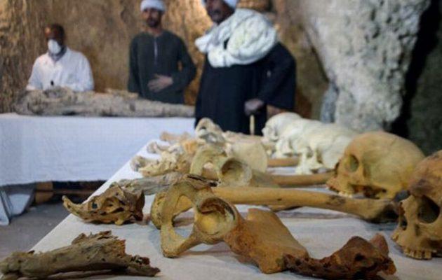 Βρέθηκε μούμια σημαντικού αρχαίου Αιγυπτίου σε τάφο που δεν είχε ερευνηθεί
