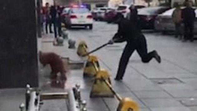 Ασύλληπτη αντίδραση αστυνομικού: Χτυπά μέχρι θανάτου σκύλο που επιτέθηκε σε πεζούς (βίντεο)