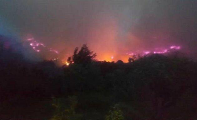 Συνελήφθη 46χρονος για τη μεγάλη φωτιά στην Ηλεία