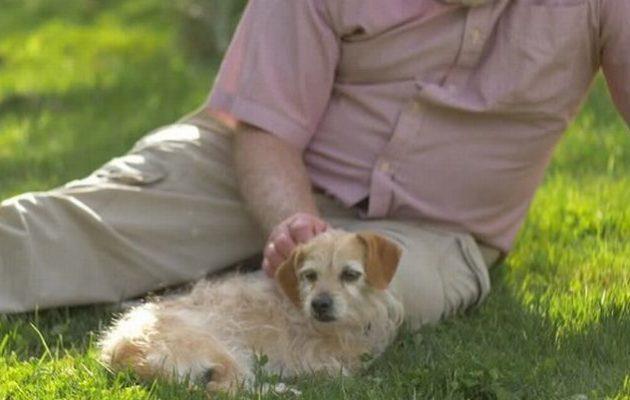 Συνελήφθη 77χρονος στην Αμαλιάδα δύο φορές μέσα σε λίγες ώρες να συνουσιάζεται δημόσια με σκυλάκι