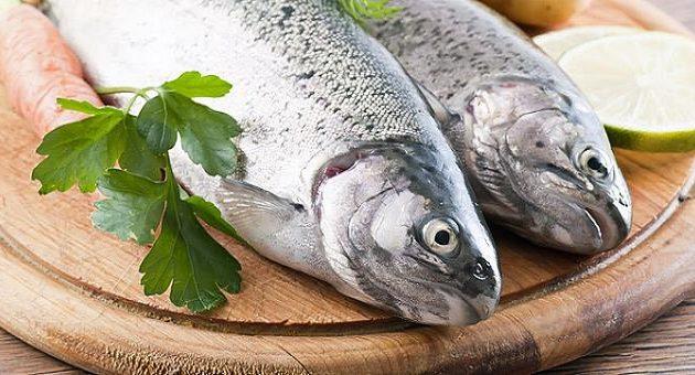 Τρώτε ψάρια για καλό κρεβάτι και πολλά παιδιά – Τι έδειξε έρευνα του Χάρβαρντ