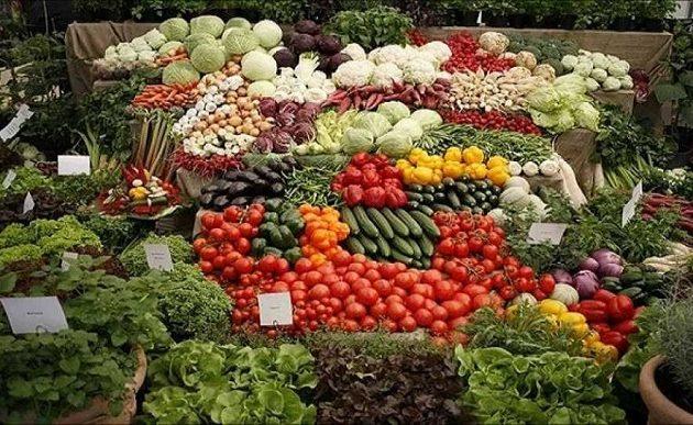 Ρεκόρ όλων των εποχών στις ελληνικές εξαγωγές φρούτων και λαχανικών