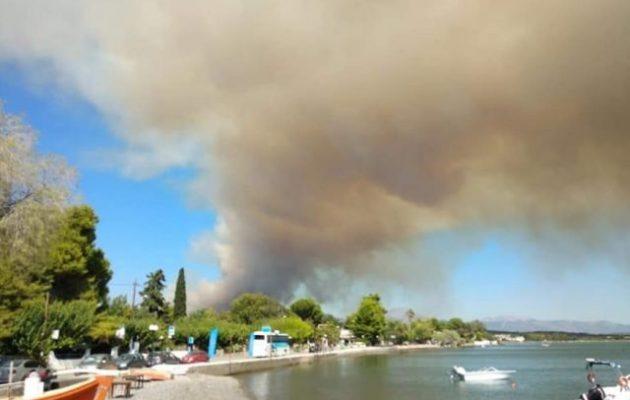 Μεγάλη φωτιά στην Εύβοια – Εκκενώθηκαν χωριά – Καίγεται πυκνό πευκοδάσος
