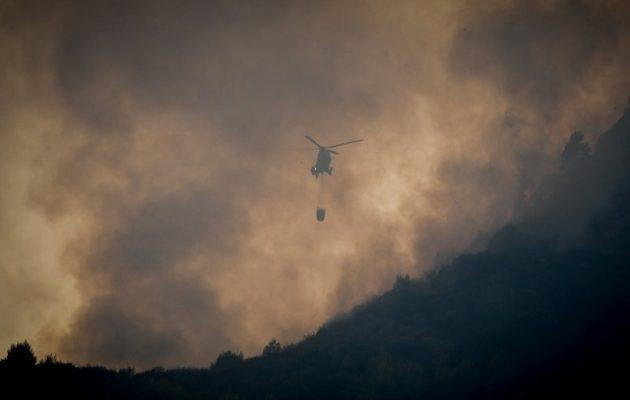 Σε εξέλιξη φωτιά στην περιοχή της Αμαλιάδας