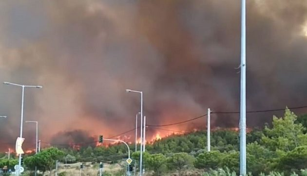 Αστεροσκοπείο Αθηνών: Η φωτιά έφτασε σε 30 λεπτά από τη Λ. Μαραθώνος στη θάλασσα