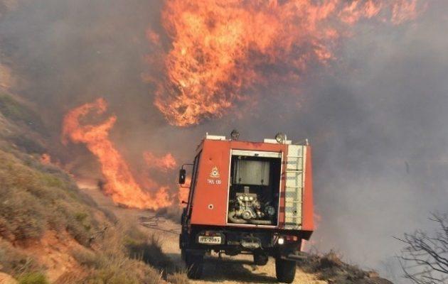 Πυρκαγιά μαίνεται από το μεσημέρι του Σαββάτου στον Κιθαιρώνα