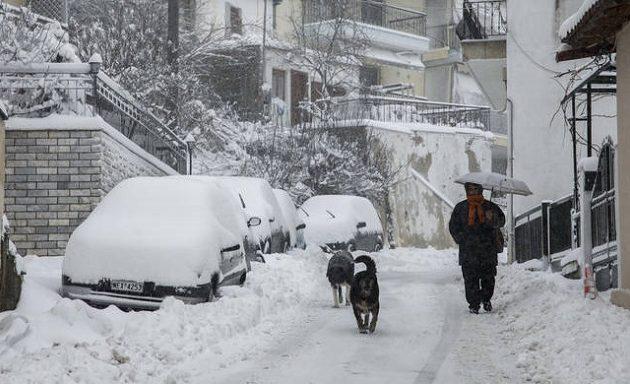 Αστεροσκοπείο: Το ψύχος έφερε ρεκόρ – Το 63% της χώρας καλύφθηκε με χιόνι