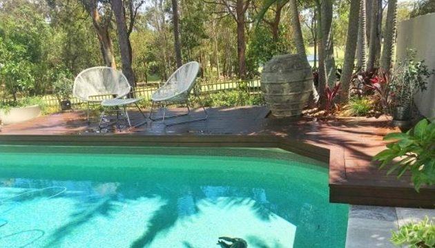 Κοάλα πνίγηκε σε πισίνα για να σωθεί από τον καύσωνα στην Αυστραλία (φωτο)
