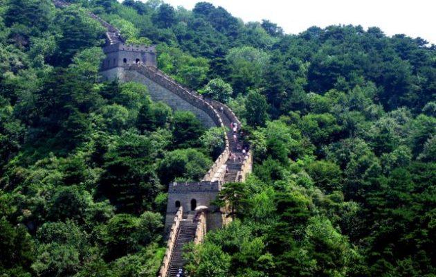 Χάρη στην Κίνα και την Ινδία σήμερα έχουμε περισσότερα δάση από ό,τι πριν 20 χρόνια