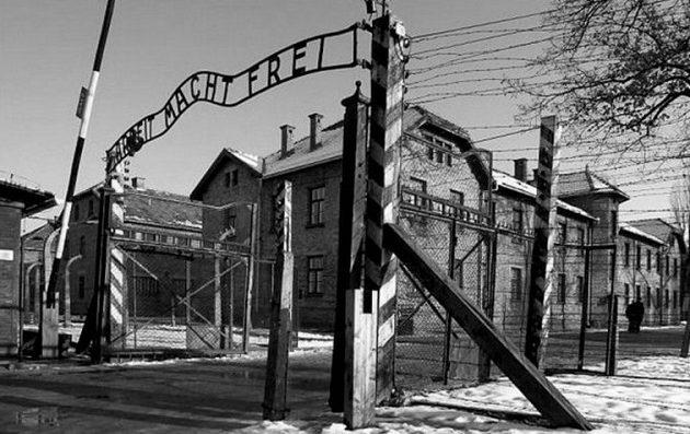 Έτσι «προχώρησαν» τη γυναικολογία οι Γερμανοί – Μελετώντας ιστούς θυμάτων των ναζί