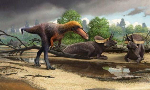Παλαιοντολόγοι ανακάλυψαν ένα άγνωστο έως τώρα είδος τυραννόσαυρου