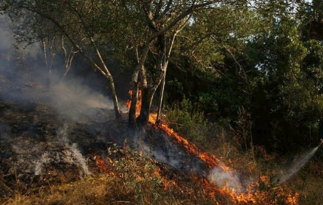 Μακάβριο εύρημα: Βρέθηκε νεκρός άνδρας σε κατάσβεση πυρκαγιάς στον Αυλώνα