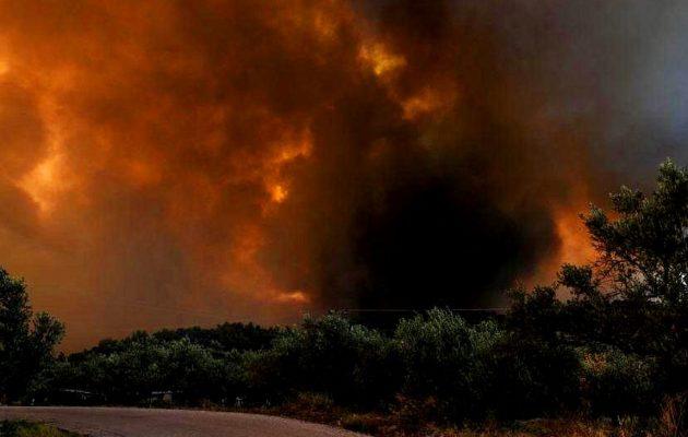 Μεγάλη φωτιά στην Εύβοια: Δύσκολη νύχτα για τα χωριά της Κύμης