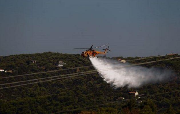 Μάχη με τις φλόγες στη Ραφήνα – Υπό έλεγχο η φωτιά στον Βαρνάβα
