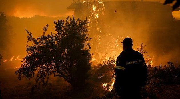 Σε εμπρησμό οφείλεται η καταστροφική πυρκαγιά στην Εύβοια
