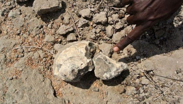 Εκπληκτικό εύρημα: Ανακαλύφθηκε κρανίο 3,8 εκατ. χρόνων στην Αιθιοπία