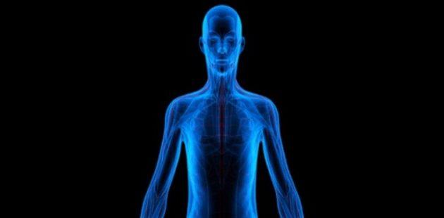 Ανακαλύφθηκε άγνωστο όργανο στο ανθρώπινο σώμα – Πού βρίσκεται και τι κάνει