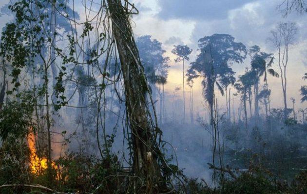 Ο Αμαζόνιος γίνεται κάρβουνο και ο Μπολσονάρου δηλώνει: «Δεν έχουμε λεφτά να σβήσουμε τη φωτιά»