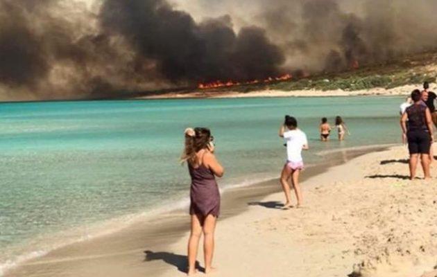 Ελαφόνησος: Κάηκε το 25% του νησιού – Χάθηκε ο τουρισμός