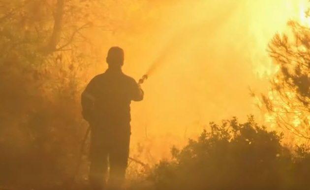 Τεράστια οικολογική καταστροφή στην Εύβοια – Αγώνας να περιοριστεί η φωτιά