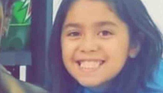 Τρία πίτμπουλ κατασπάραξαν 9χρονη στις ΗΠΑ