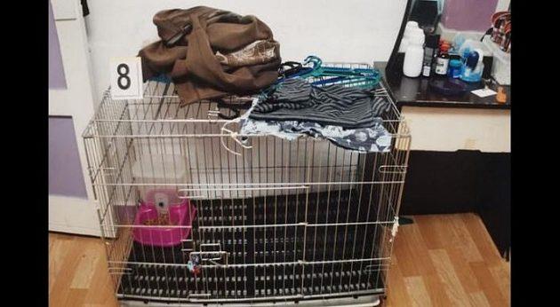 Φρίκη: Eίχαν κλείσει σε κλουβί για γάτες τον 5χρονο γιο τους και τον ζεμάτισαν