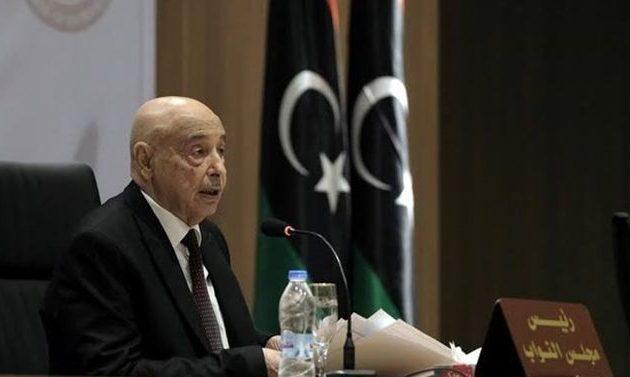 Ακίλα Σάλεχ: Ο ΟΗΕ παρέχει στην Τουρκία το δικαίωμα να εισβάλλει και να καταλαμβάνει τη χώρα μας