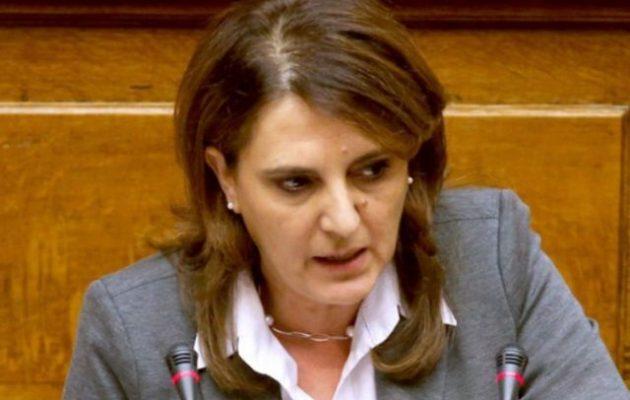 Ολ. Τελιγιορίδου: 12.000 ευρώ η βασιλόπιτα στο υπουργείο Αγροτική Ανάπτυξης – Πέρσι 30 ευρώ